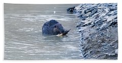 Beaver Chews On Stick Hand Towel