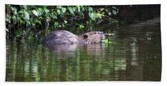 beaver swims in NC lake Hand Towel by Chris Flees