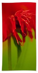 Bath Towel featuring the photograph Bee Balm Abstract by Jani Freimann