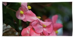 Begonia Beauty Hand Towel