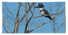 Belted Kingfisher 4 Hand Towel
