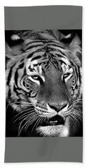 Bengal Tiger In Black And White Hand Towel by Venetia Featherstone-Witty