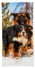 Bernese Mountain Dog And Leonberger Winter Fun Hand Towel