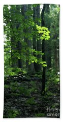 Beyond The Trees Hand Towel by Linda Shafer