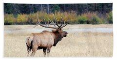 Big Colorado Bull Bath Towel