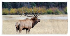 Big Colorado Bull Bath Towel