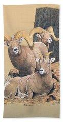 Bighorn Sheep Bath Towel