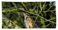 Bird - Baby Robin Hand Towel by Paul Ward