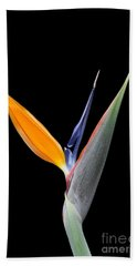 Bird Of Paradise #2 Hand Towel
