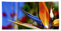 Hand Towel featuring the photograph Bird Of Paradise Open For All To See by Jerry Cowart