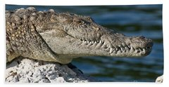 Hand Towel featuring the photograph Biscayne National Park Florida American Crocodile by Paul Fearn