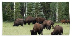 Bison At North Rim Hand Towel by Laurel Powell
