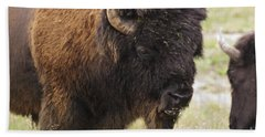 Hand Towel featuring the photograph Bison From Yellowstone by Belinda Greb