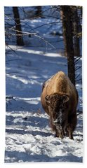 Bison In Winter Hand Towel