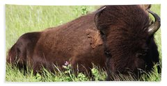 Hand Towel featuring the photograph Bison Nap by Alyce Taylor