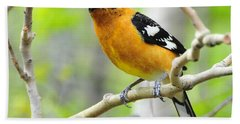 Blach-headed Grosbeak Bath Towel