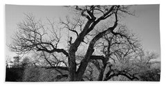 Hand Towel featuring the photograph Black And White Oak by Janice Westerberg
