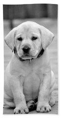 Black And White Puppy Bath Towel