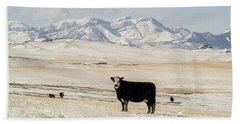 Black Baldy Cows Bath Towel