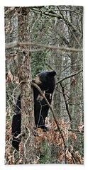 Black Bear Cub Hand Towel