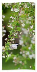 Black Capped Chickadee Portrait Hand Towel