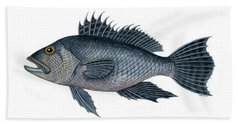 Black Sea Bass 3 Hand Towel