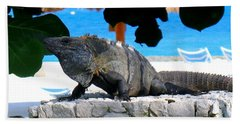 Bath Towel featuring the photograph Black Spiny Tailed Iguana by Patti Whitten