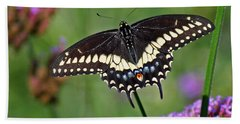 Black Swallowtail Butterfly  Hand Towel