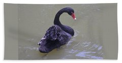 Black Swan Cygnus Atratus Hand Towel by Venetia Featherstone-Witty