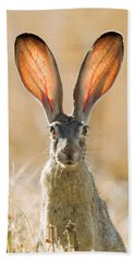 Black-tailed Hare Davis California Hand Towel by Doug Herr