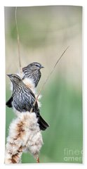 Blackbird Pair Hand Towel by Mike  Dawson