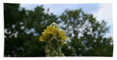 Bath Towel featuring the photograph Blended Golden Rod Crab Spider On Mullein Flower by Neal Eslinger