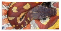 Blood Python Hand Towel by Art Wolfe