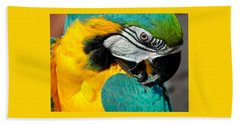 Blue And Yellow Macaw  Bath Towel by Venetia Featherstone-Witty