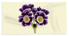Hand Towel featuring the photograph Blue Auricula On A Cream Background by Paul Gulliver