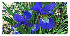 Hand Towel featuring the photograph Blue Beauty by Janice Westerberg