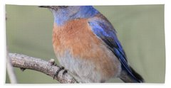 Blue Bird At Sedona Bath Towel