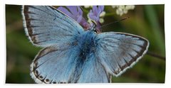 Blue Butterfly Hand Towel by Ron Harpham