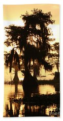 Blue Cypress Yellow Light Hand Towel by Paul Rebmann