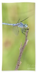 Bath Towel featuring the photograph Blue Dasher by Bryan Keil