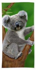 Blue-eyed Baby Koala Hand Towel