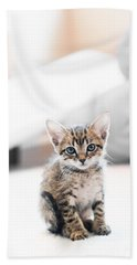 Blue Eyed Kitten Bath Towel by Shelby  Young