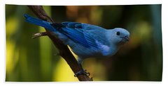 Blue Grey Tanager Bath Towel by Chris Flees
