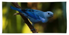 Blue Grey Tanager Bath Towel