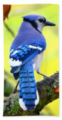 Blue Jay Hand Towel by Deena Stoddard