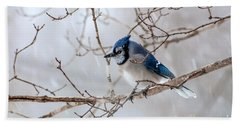 Blue Jay In Blowing Snow Bath Towel by Debbie Green