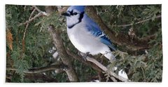 Bath Towel featuring the photograph Blue Jay In The Cedars by Brenda Brown