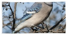 Blue Jay.. Bath Towel
