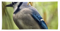 Blue Jay On A Misty Spring Day - Square Format Hand Towel by Lois Bryan