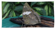 Blue-spotted Charaxes Butterfly Bath Towel